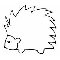 Disegno di Il Porcospino da colorare