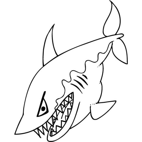 Squalo da colorare per bambini fredrotgans for Disegno squalo per bambini