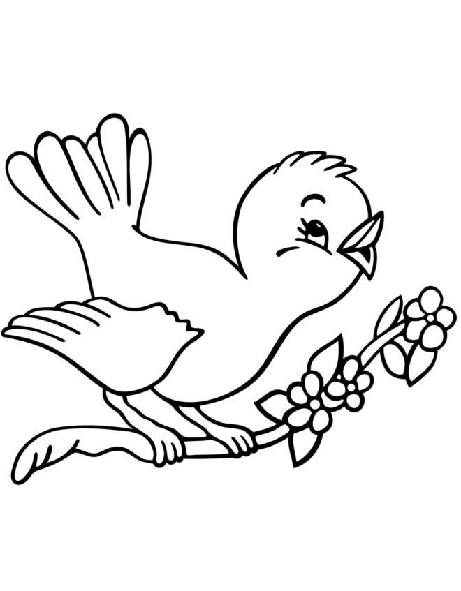 Stampa disegno di uccelli in primavera da colorare - Primavera uccelli primavera colorazione pagine ...