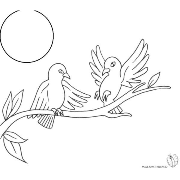 Disegno Di Uccelli Sullalbero Da Colorare Per Bambini