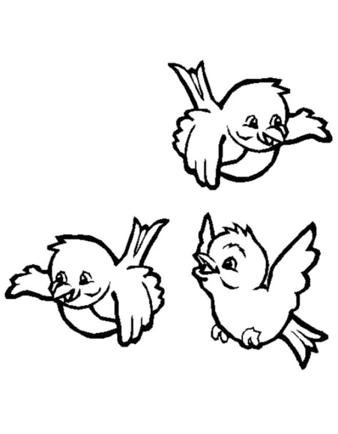 Disegno di uccellini da colorare per bambini for Disegno gatto facile