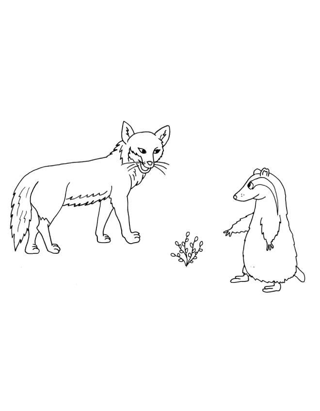 Disegno di la volpe e il suricata da colorare per bambini - Immagini di volpe spugna a colori ...