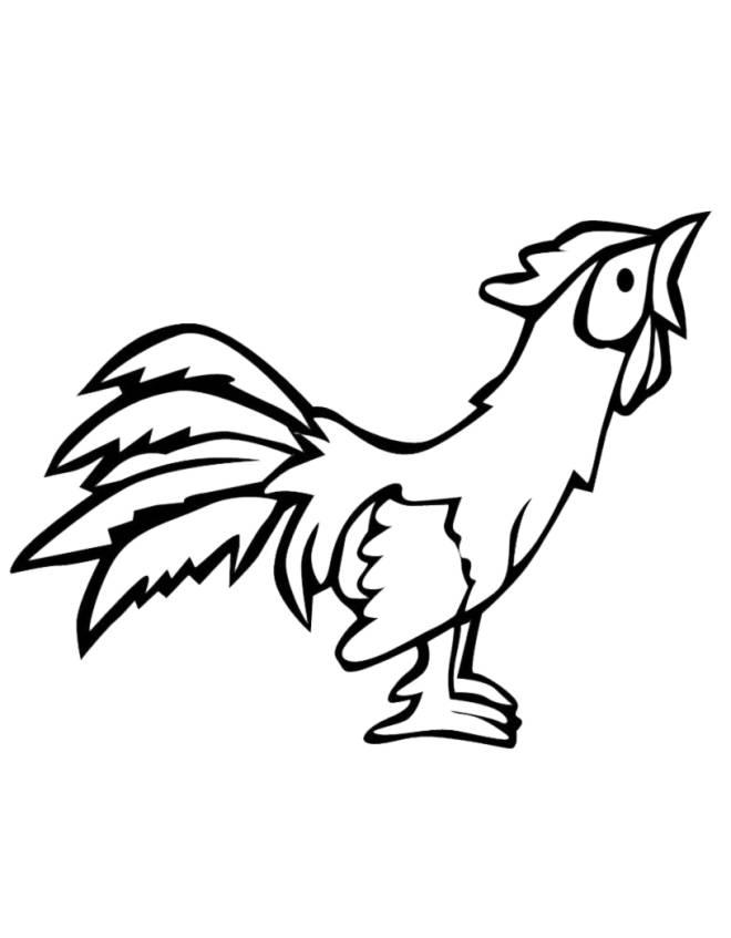Stampa disegno di gallo da colorare for Comodini per bambini online