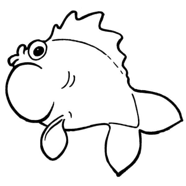Disegno Di Il Pesce Palla Da Colorare Per Bambini