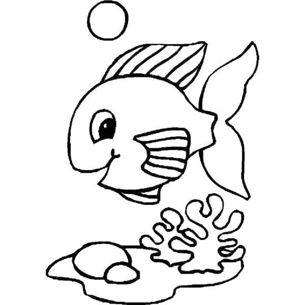 Disegno di pesciolino da colorare per bambini for Immagini di pesci da disegnare
