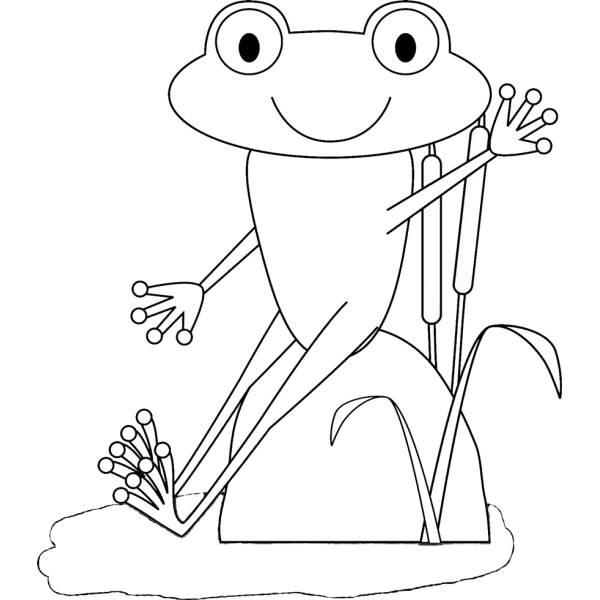 Disegno di la rana nello stagno da colorare per bambini for Animali da stagno