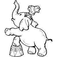 Disegno di Elefante al Circo da colorare