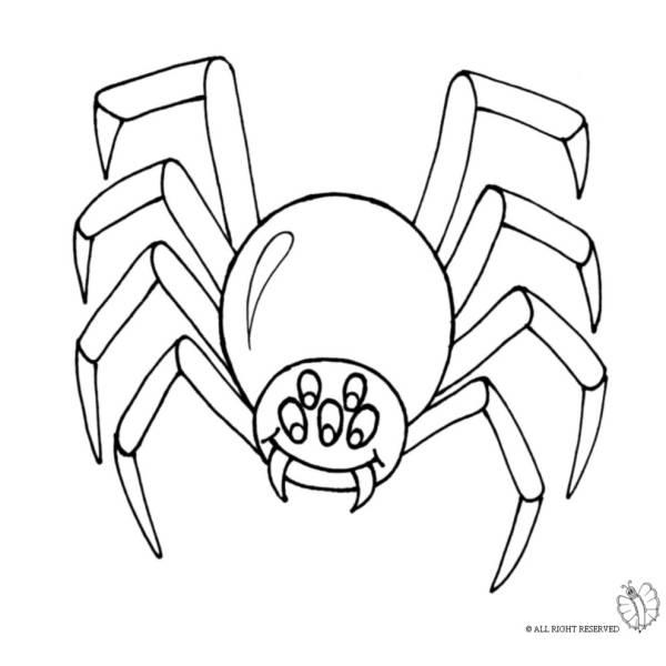 Disegno di ragno per scherzo carnevale retro da colorare - Immagini del ragno da stampare ...