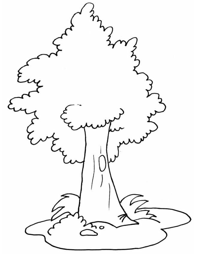 disegno di Albero da colorare