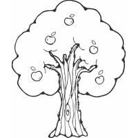 Disegno di Albero di mele da colorare