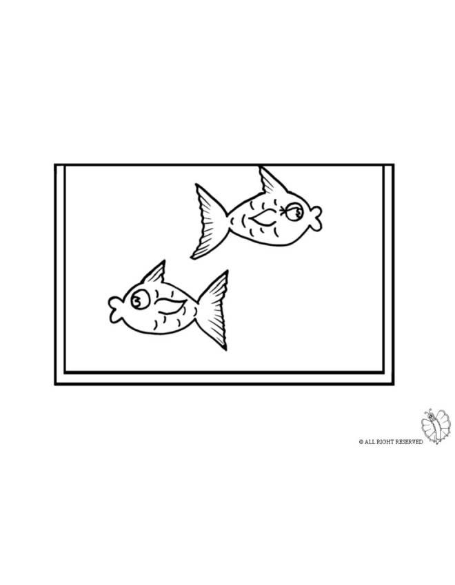 disegno di Acquario da colorare