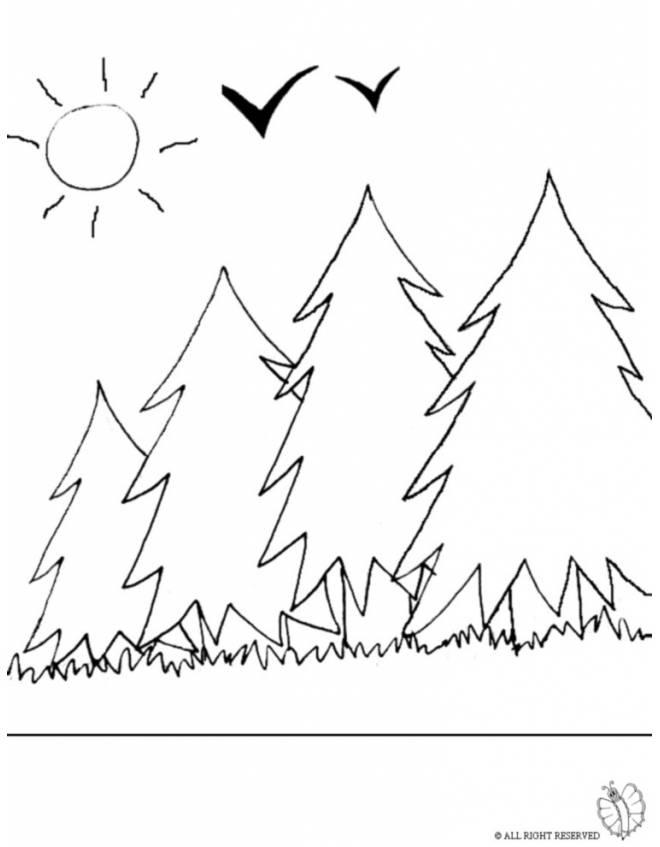 disegno di Bosco da colorare