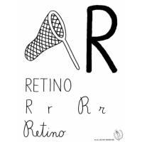 disegno di Lettera R di Retino da colorare
