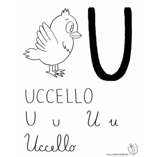 Disegno di Lettera U di Uccello da colorare