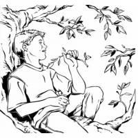 Disegno di Bambino sull'Albero da colorare