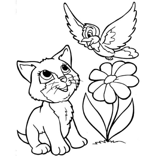 Disegno Di Gattino E Uccellino Da Colorare Per Bambini