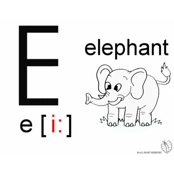 Disegno Di Lettera E Alfabeto Inglese Da Colorare Per Bambini
