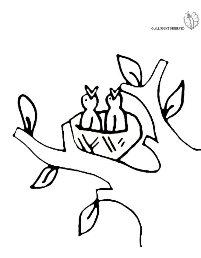 disegno di Nido di Uccelli da colorare