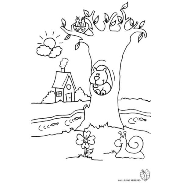 Disegno di paesaggio naturale da colorare per bambini for Foto di alberi da colorare