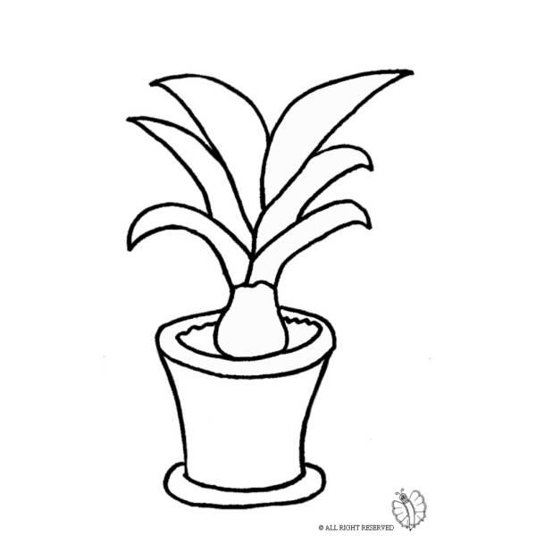 Disegno di Pianta nel Vaso da colorare