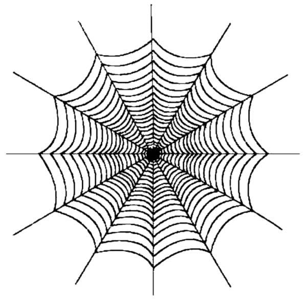 Disegno di ragnatela da colorare per bambini - Immagini del ragno da stampare ...