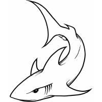 Disegno di squalo da colorare per bambini for Disegno squalo per bambini