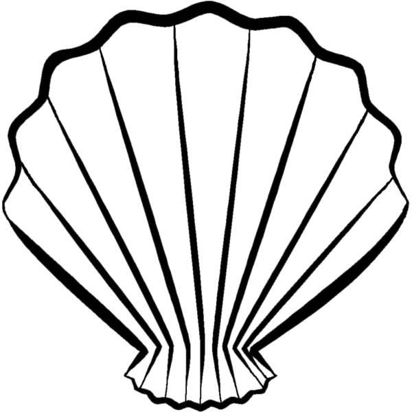 Disegno di conchiglia a ventaglio da colorare per bambini for Disegni di mare da colorare