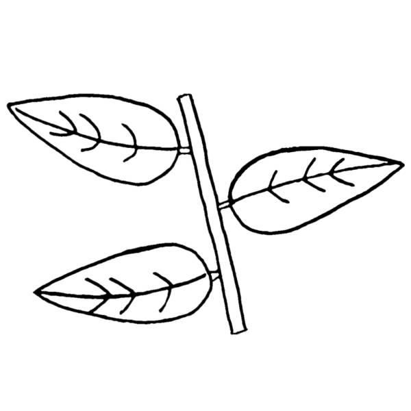 Disegno di le foglie da colorare per bambini - Modello di foglia per bambini ...