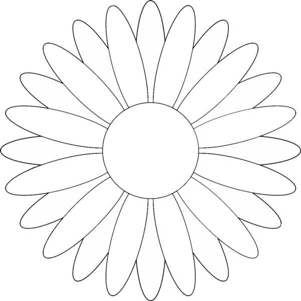 Disegno Di Margherita Da Colorare Per Bambini