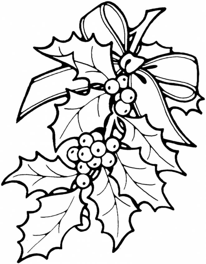 christmas holly border coloring pages - photo#9
