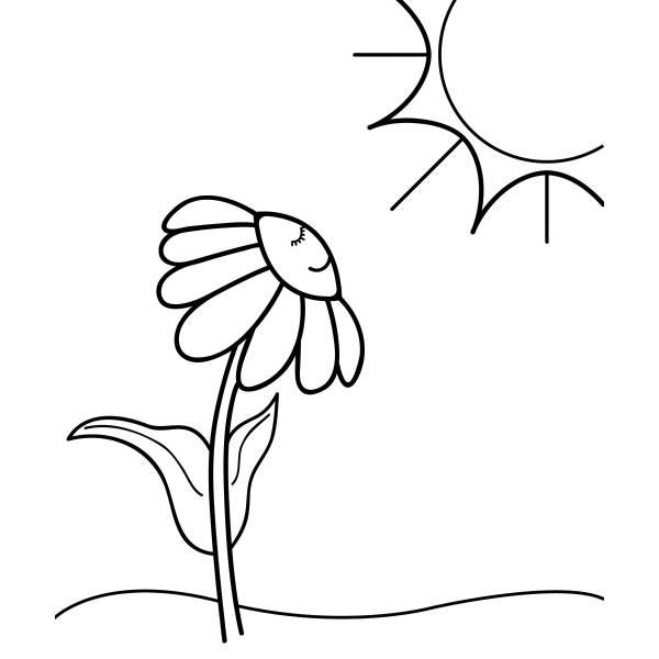 Disegno di la margherita al sole da colorare per bambini for Sole disegno da colorare