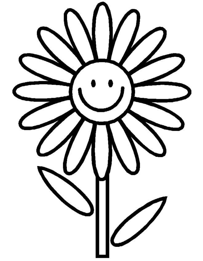 disegni da colorare fiori margherita