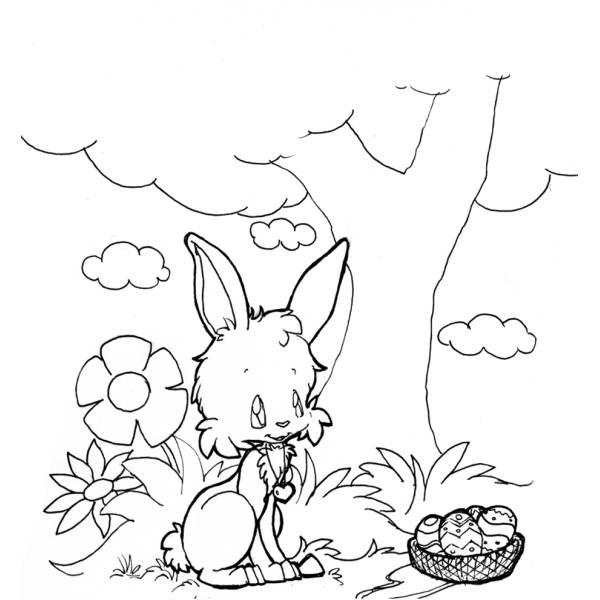 Disegno Di Coniglio Nel Bosco Da Colorare Per Bambini