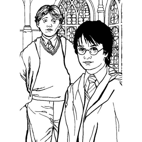 Disegno Di Rupert Grint Ed Harry Potter Da Colorare Per Bambini