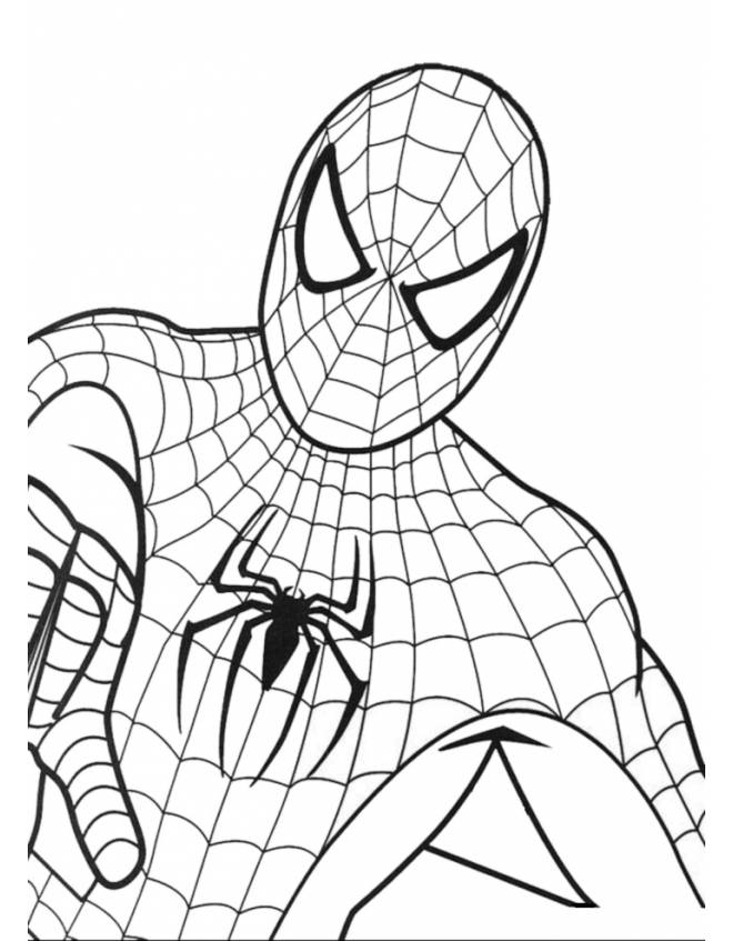 Disegno di spiderman da colorare per bambini for Spiderman da colorare e stampare