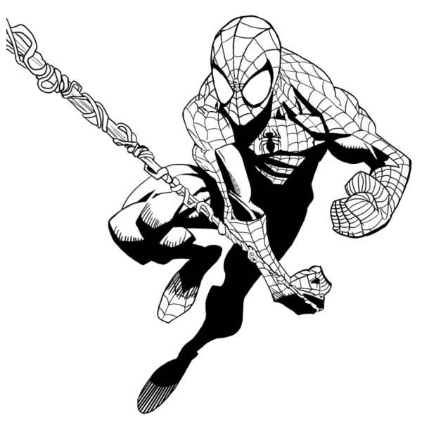 Disegno di spiderman l 39 uomo ragno da colorare per bambini for Immagini da colorare spiderman