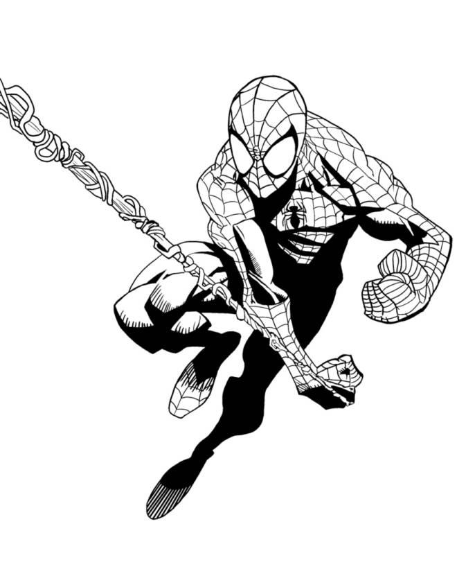 Disegno di spiderman l 39 uomo ragno da colorare per bambini for Spiderman da colorare on line