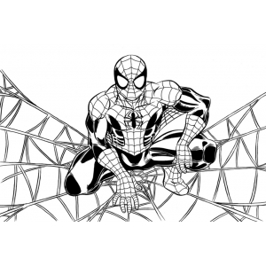 Colora Spiderman Online Disegni Colorare Imagixs Graffiti