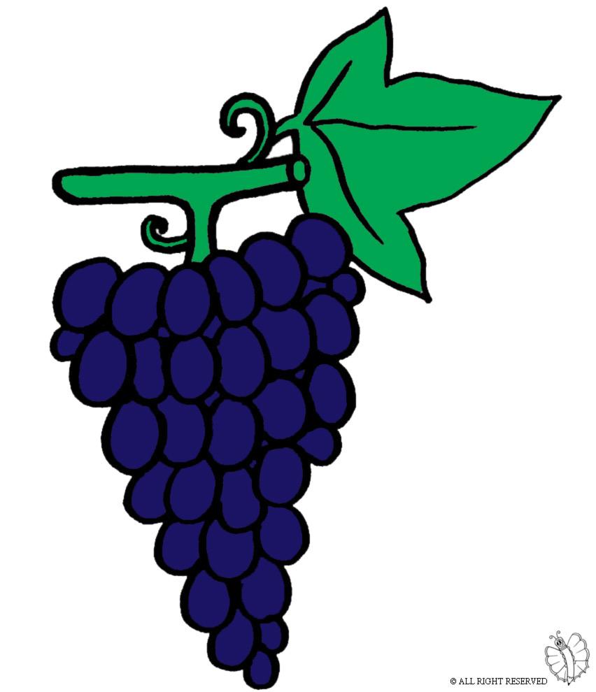 disegno di Pigna d'uva a colori