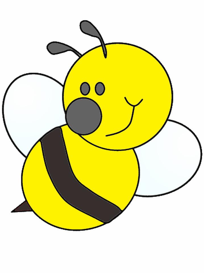 stampa disegno di ape a colori