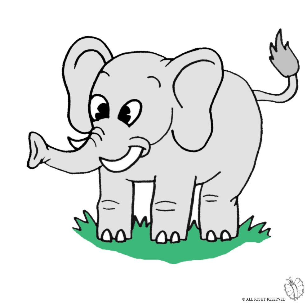 Stampa disegno di elefante a colori - Immagini di marmellata di animali a colori ...