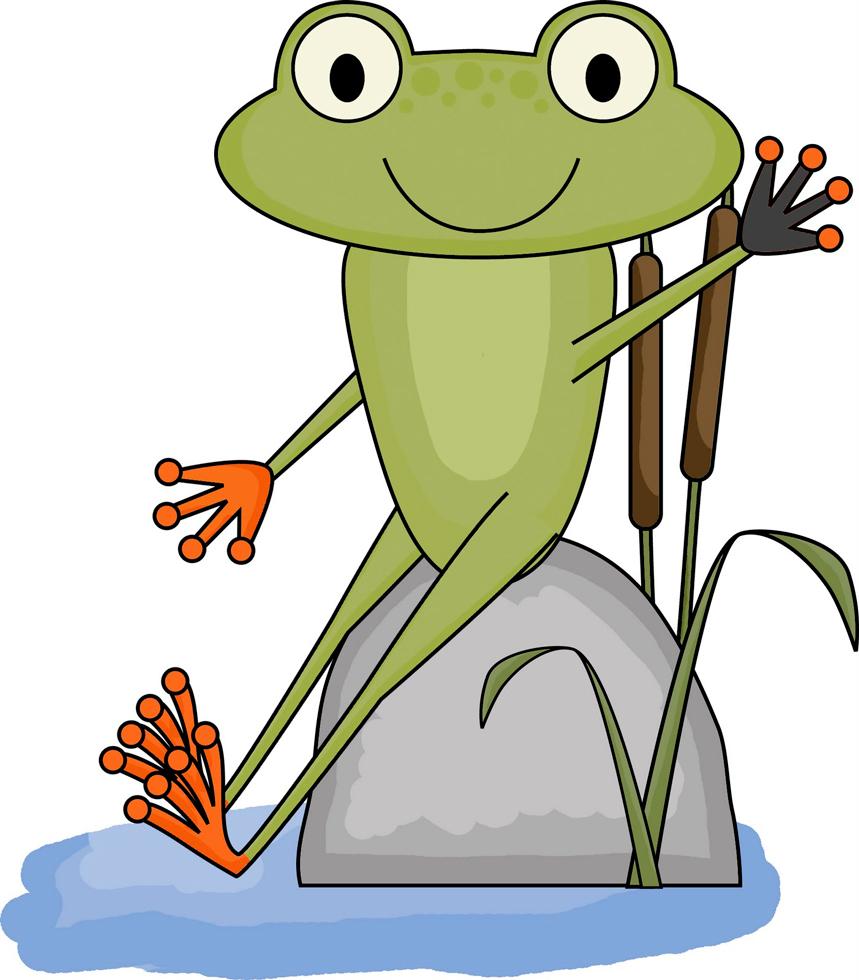 Stampa disegno di la rana nello stagno a colori for Animali da stagno