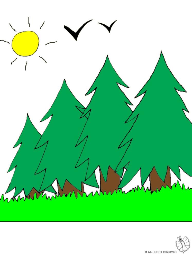 disegno di Bosco a colori
