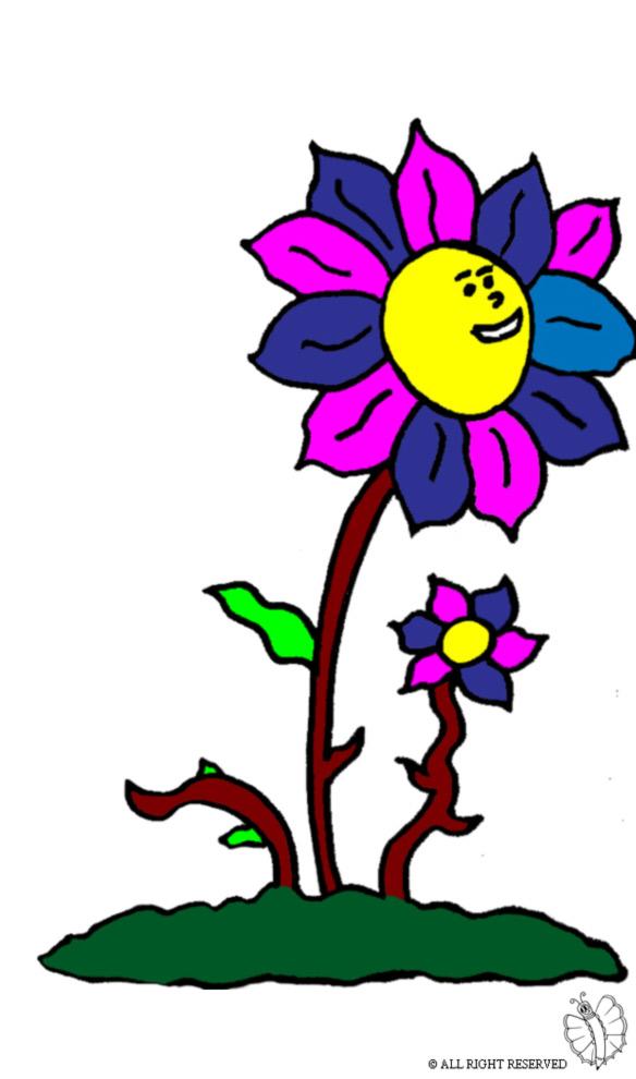 Pin stampa disegno fiore puzzola colori pictures on pinterest
