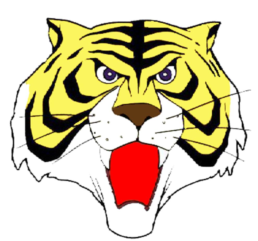 Disegno Tigre Per Bambini Diego Che Salta Tigre
