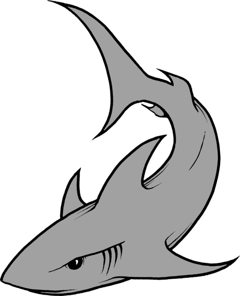 Stampa disegno di lo squalo a colori for Immagini squali da stampare