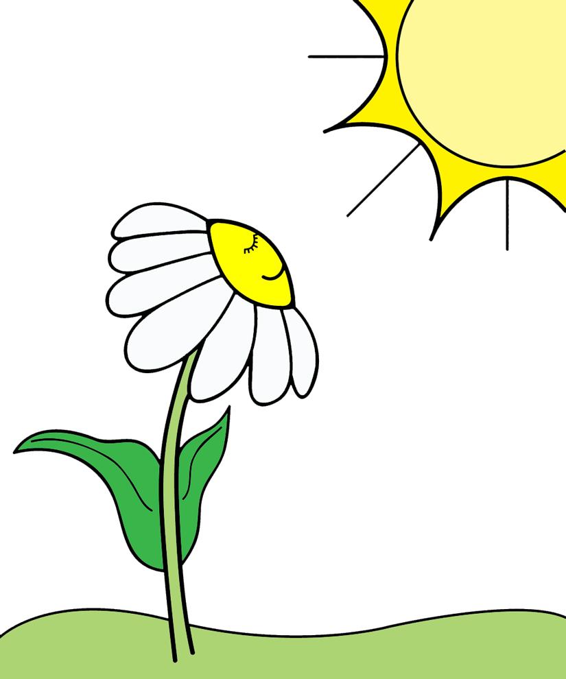 Stampa disegno di la margherita al sole a colori for Sole disegno da colorare