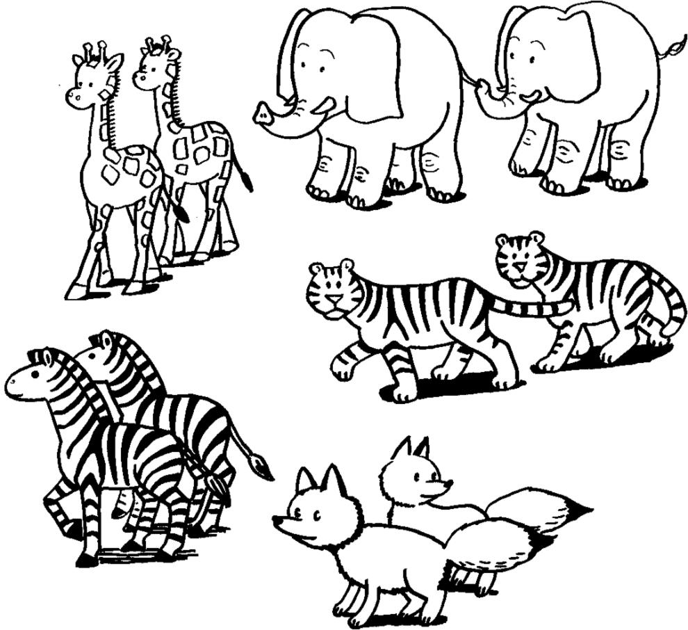 Stampa disegno di coppie di animali da colorare - Animali immagini da colorare pagine da colorare ...