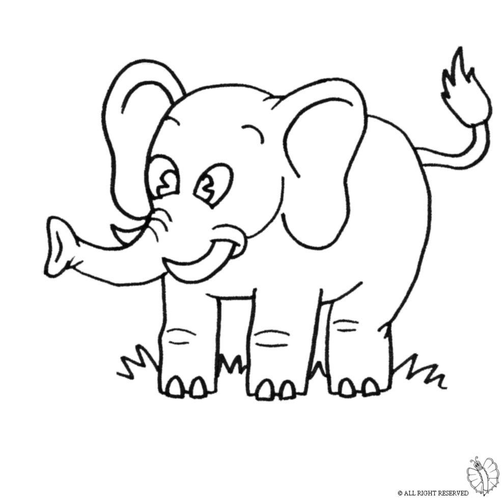 Stampa disegno di elefante da colorare for Disegni da colorare animali della foresta