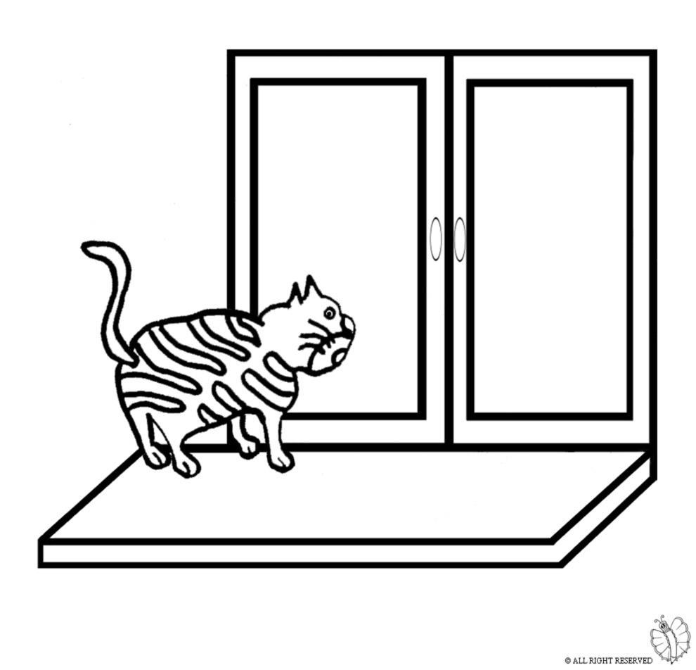 stampa disegno di gatto sulla finestra da colorare